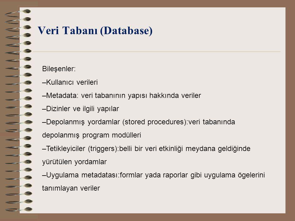 Veri Tabanı (Database)