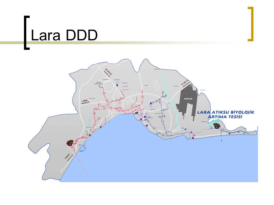 Lara DDD