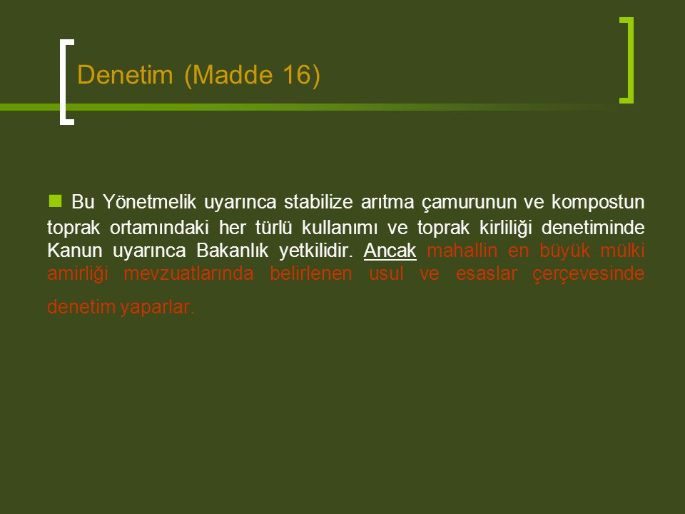 Denetim (Madde 16)