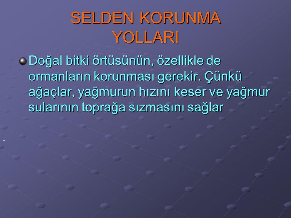 SELDEN KORUNMA YOLLARI