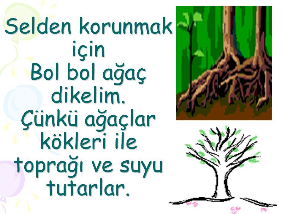 Selden korunmak için Bol bol ağaç dikelim