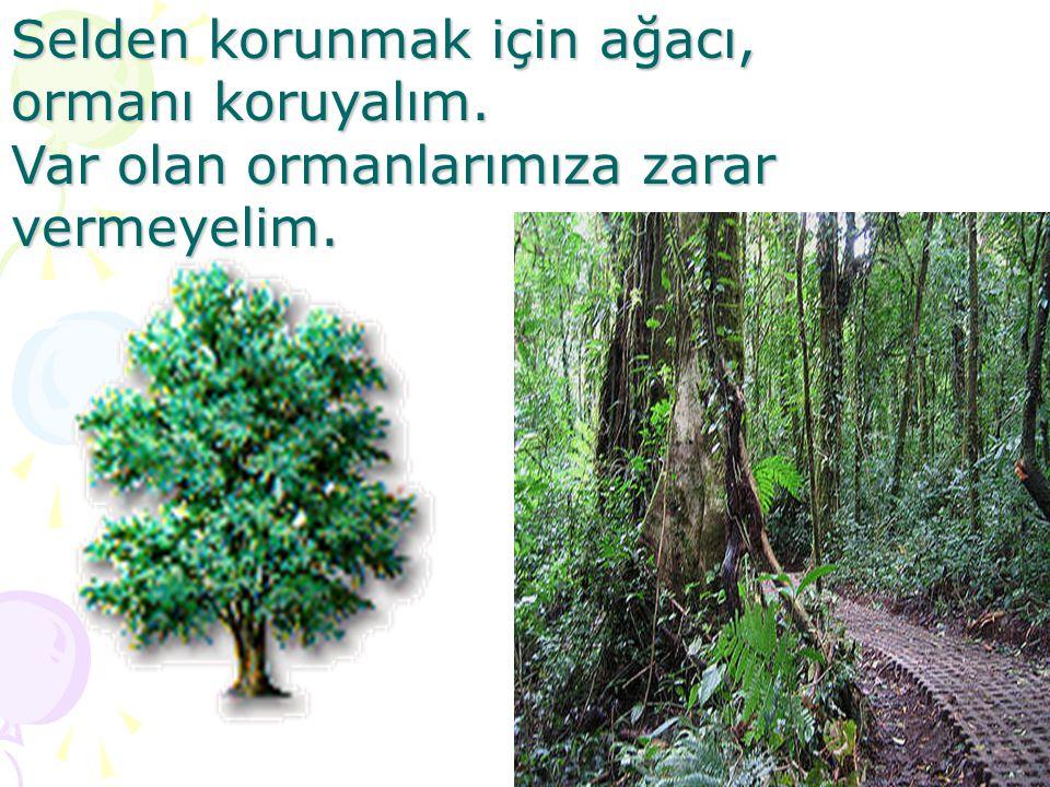 Selden korunmak için ağacı,