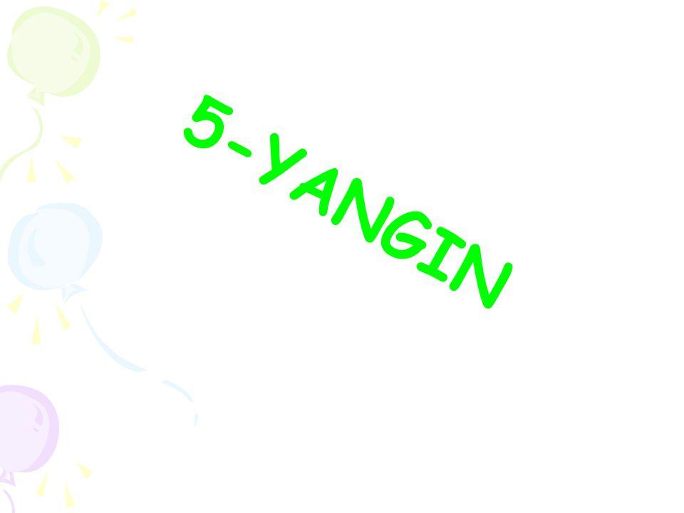 5-YANGIN