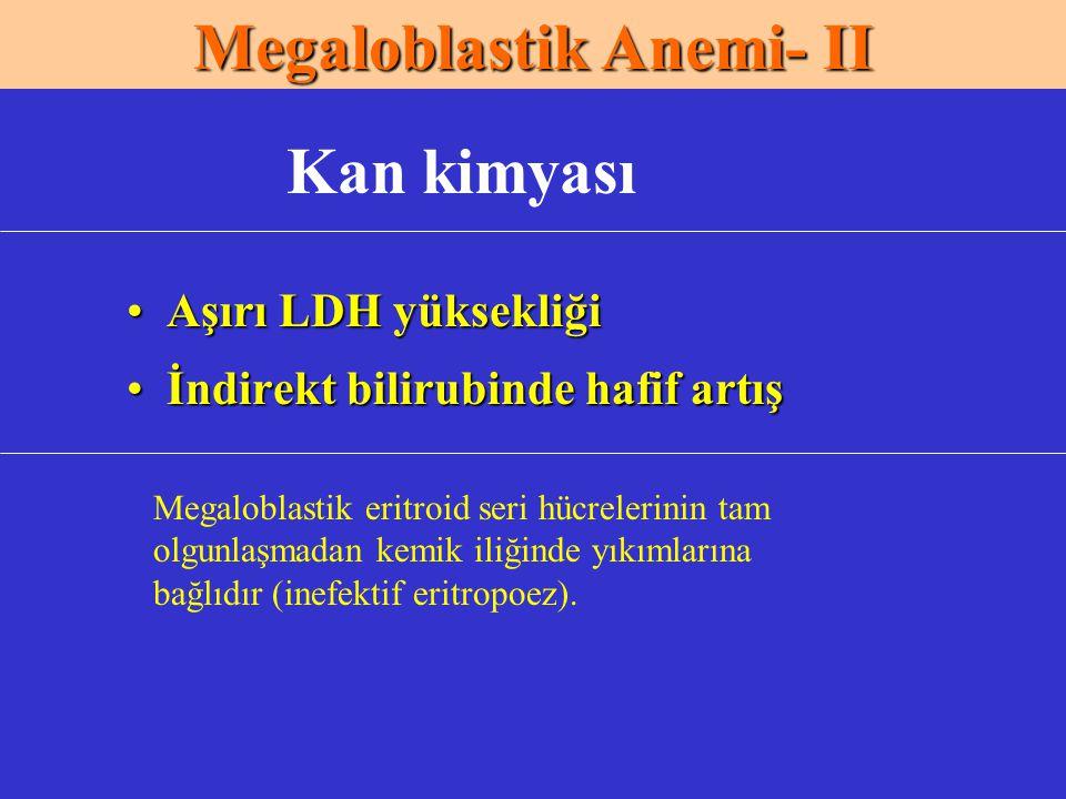 Megaloblastik Anemi- II