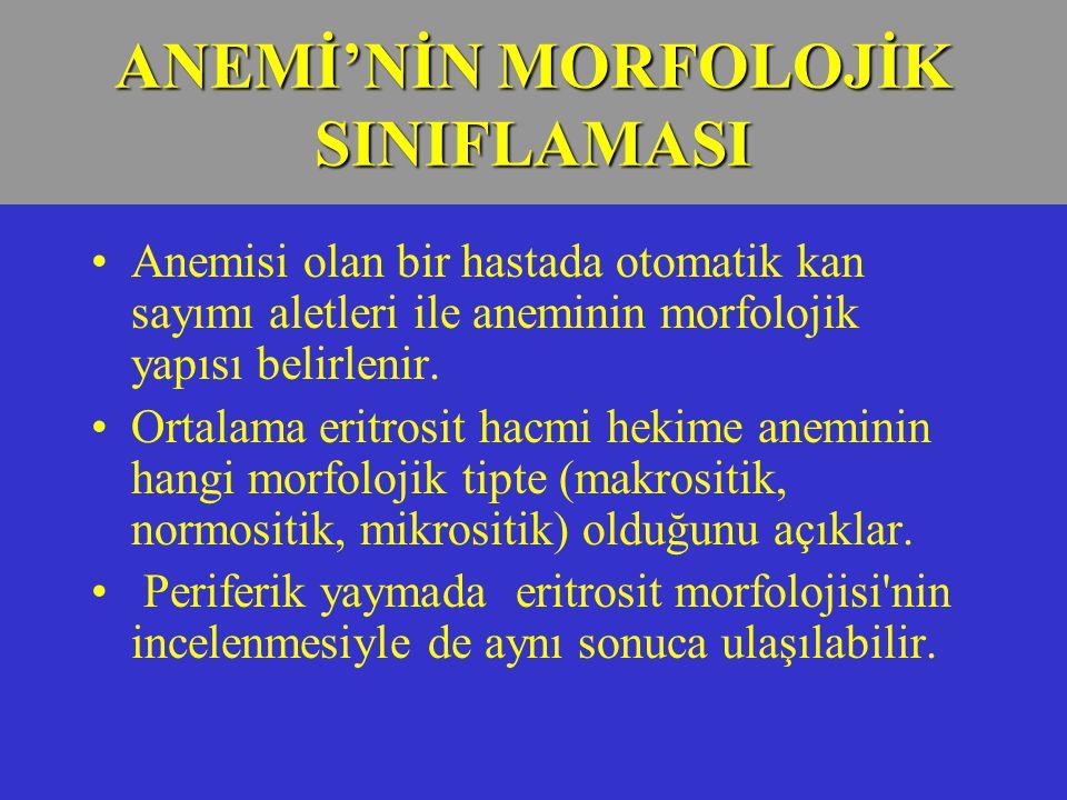 ANEMİ'NİN MORFOLOJİK SINIFLAMASI