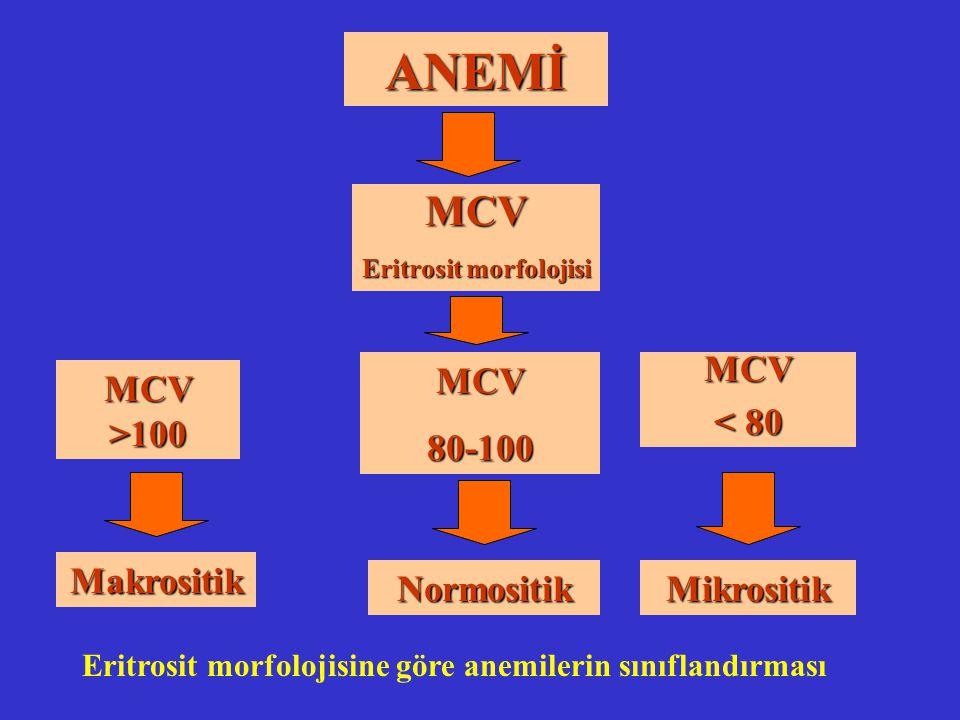 Eritrosit morfolojisi