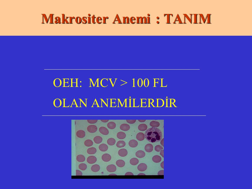 Makrositer Anemi : TANIM