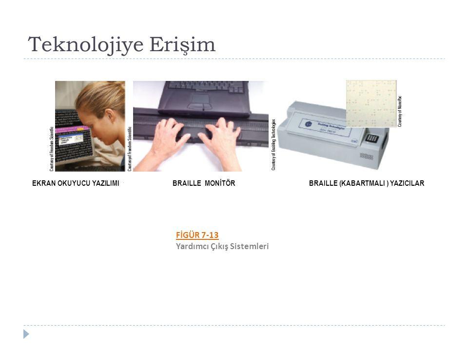 Teknolojiye Erişim FİGÜR 7-13 Yardımcı Çıkış Sistemleri