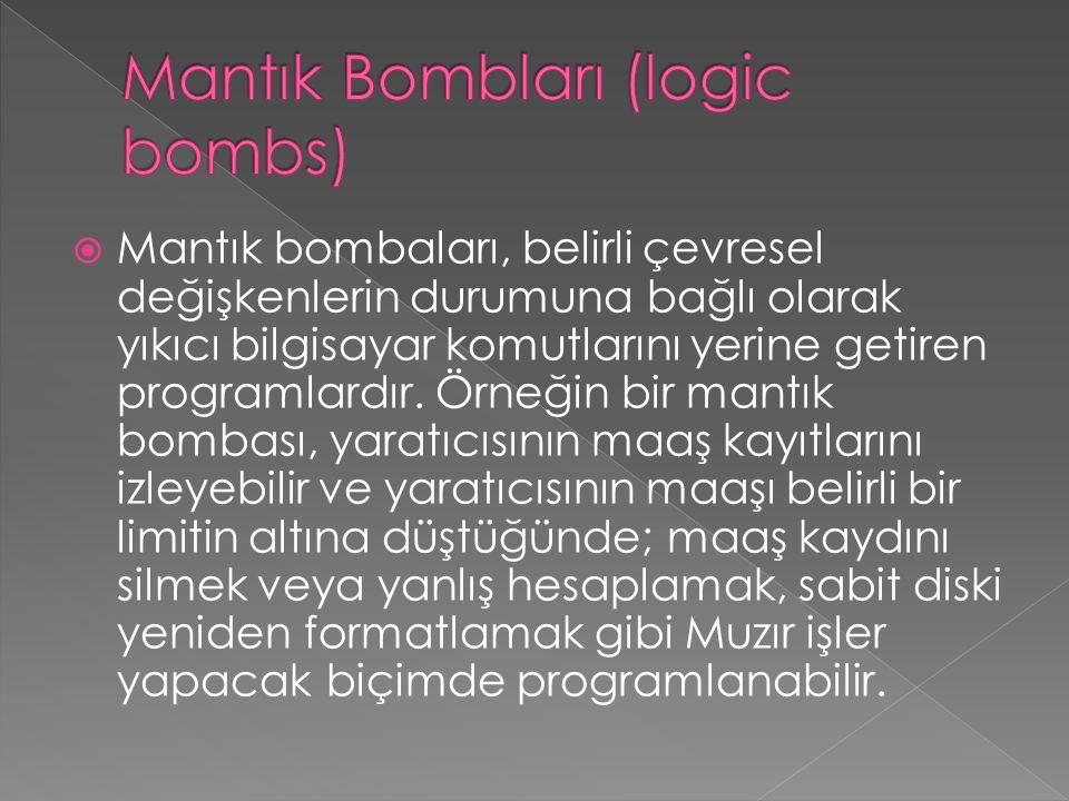 Mantık Bombları (logic bombs)