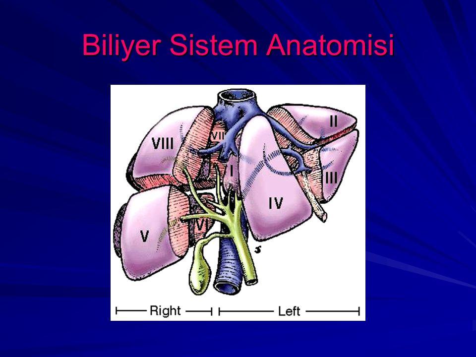 Biliyer Sistem Anatomisi