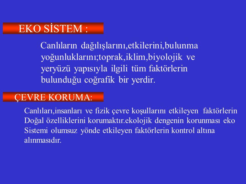 EKO SİSTEM :