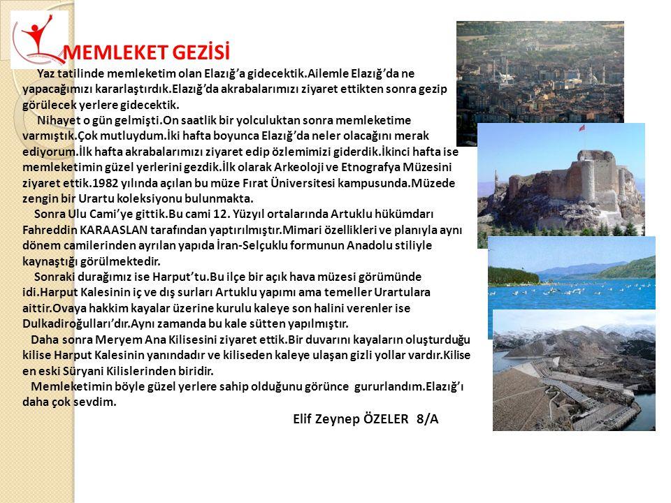 MEMLEKET GEZİSİ Elif Zeynep ÖZELER 8/A