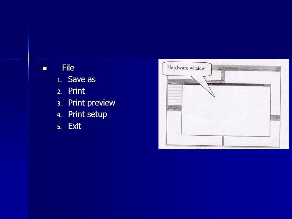 File Save as Print Print preview Print setup Exit