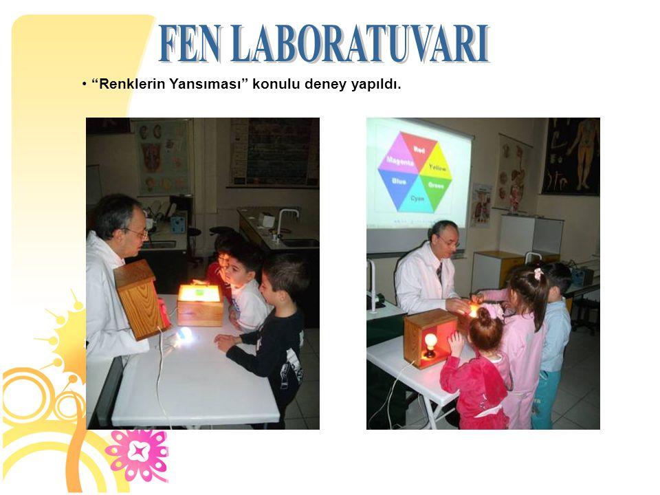 FEN LABORATUVARI Renklerin Yansıması konulu deney yapıldı. 10