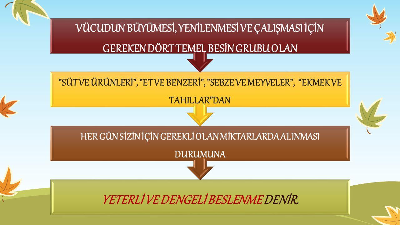YETERLİ VE DENGELİ BESLENME DENİR.