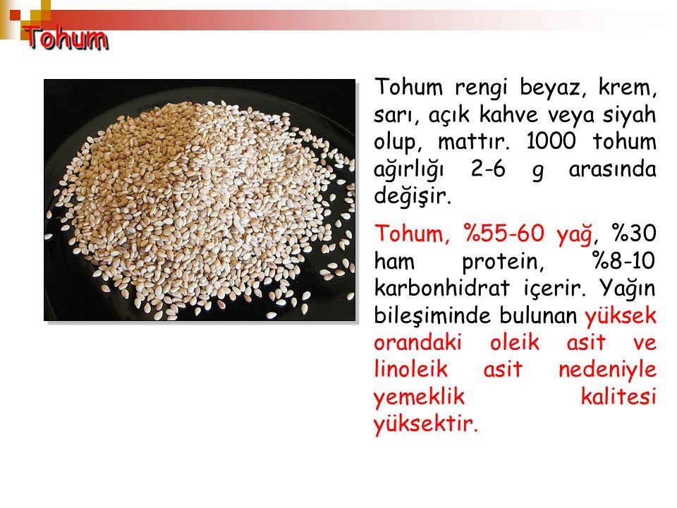 Tohum Tohum rengi beyaz, krem, sarı, açık kahve veya siyah olup, mattır. 1000 tohum ağırlığı 2-6 g arasında değişir.