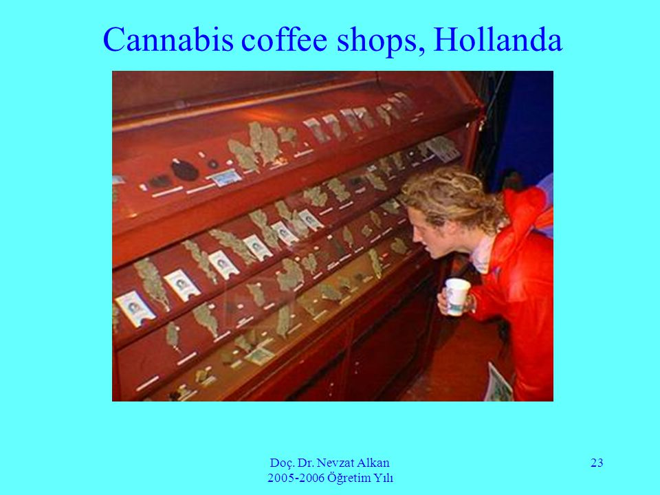 Cannabis coffee shops, Hollanda