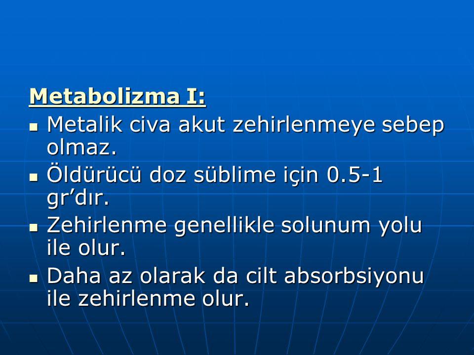 Metabolizma I: Metalik civa akut zehirlenmeye sebep olmaz. Öldürücü doz süblime için 0.5-1 gr'dır.