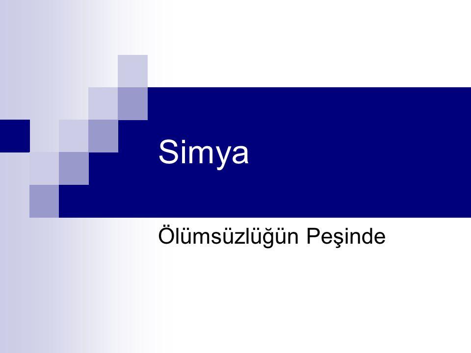 Simya Ölümsüzlüğün Peşinde