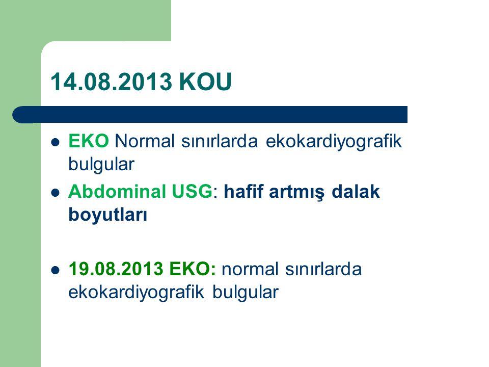 14.08.2013 KOU EKO Normal sınırlarda ekokardiyografik bulgular