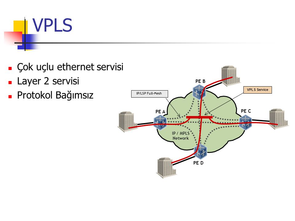 Virtual Private LAN Service (VPLS)
