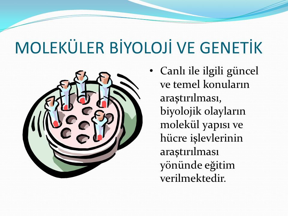 MOLEKÜLER BİYOLOJİ VE GENETİK