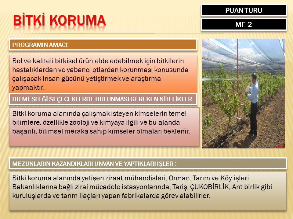 BİTKİ KORUMA PUAN TÜRÜ MF-2