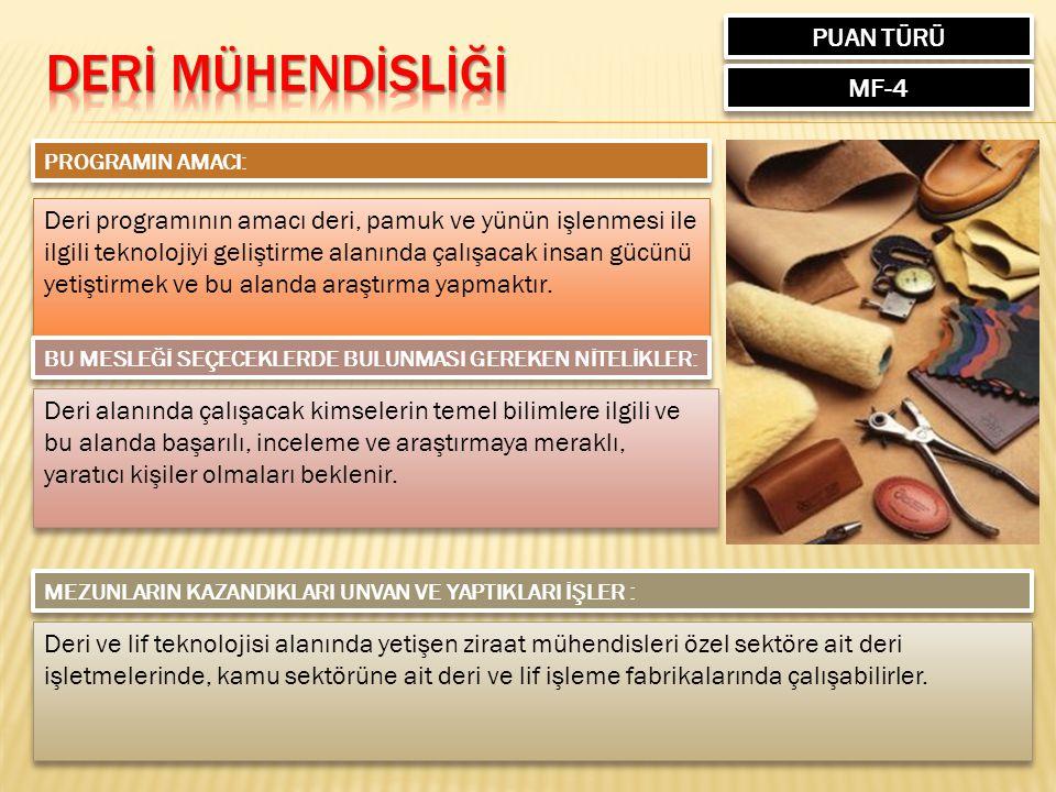 DERİ MÜHENDİSLİĞİ PUAN TÜRÜ MF-4