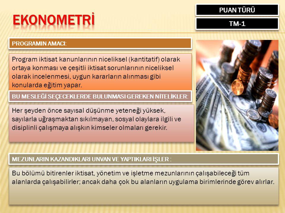 EKONOMETRİ PUAN TÜRÜ TM-1