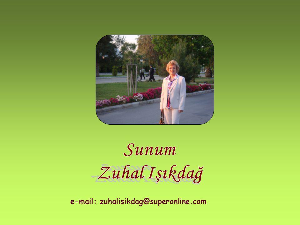 Sunum Zuhal Işıkdağ e-mail: zuhalisikdag@superonline.com