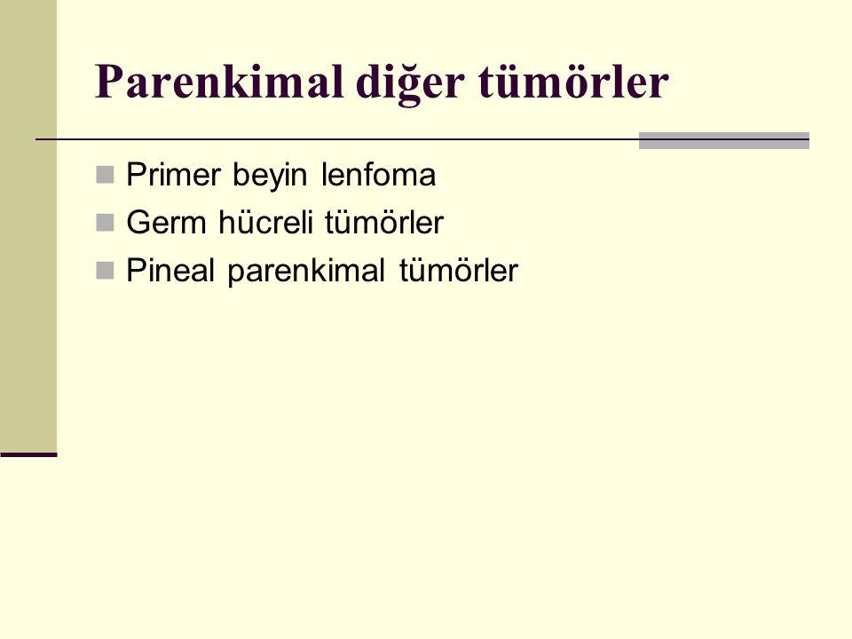 Parenkimal diğer tümörler