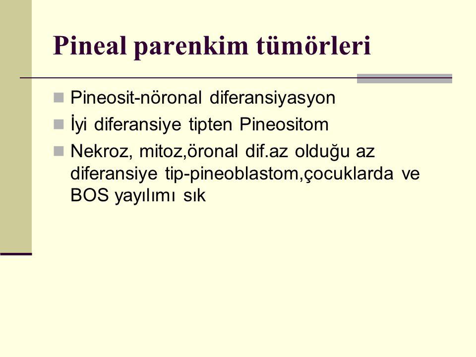 Pineal parenkim tümörleri