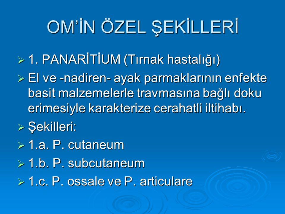 OM'İN ÖZEL ŞEKİLLERİ 1. PANARİTİUM (Tırnak hastalığı)