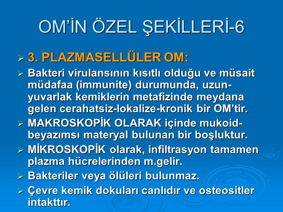 OM'İN ÖZEL ŞEKİLLERİ-6 3. PLAZMASELLÜLER OM:
