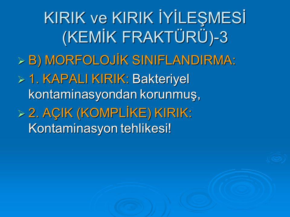 KIRIK ve KIRIK İYİLEŞMESİ (KEMİK FRAKTÜRÜ)-3