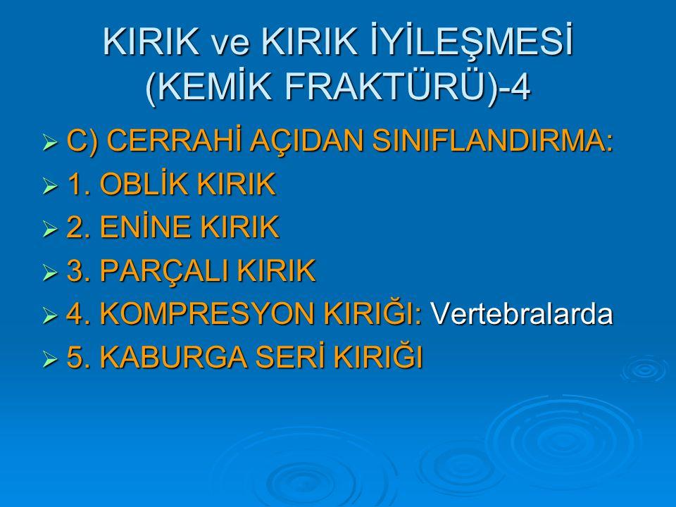 KIRIK ve KIRIK İYİLEŞMESİ (KEMİK FRAKTÜRÜ)-4