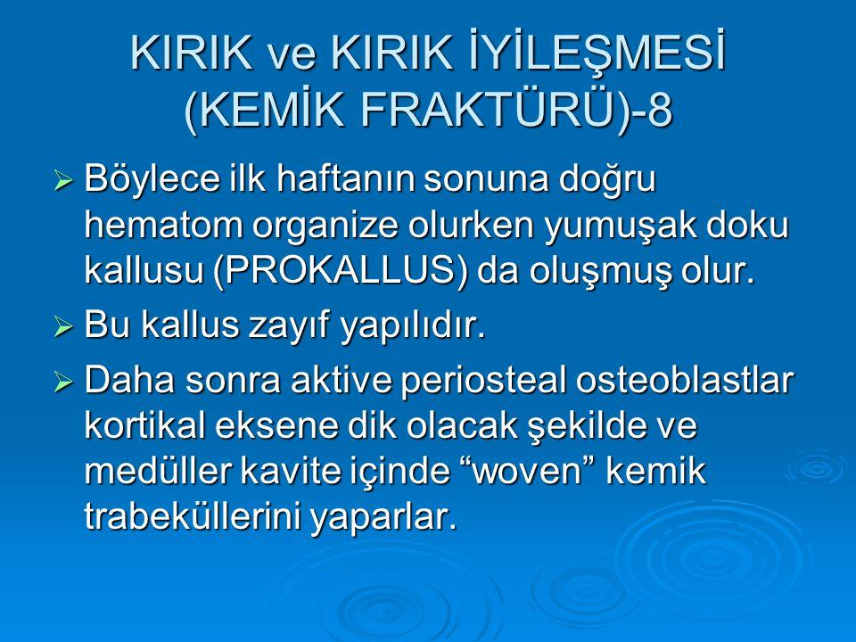 KIRIK ve KIRIK İYİLEŞMESİ (KEMİK FRAKTÜRÜ)-8