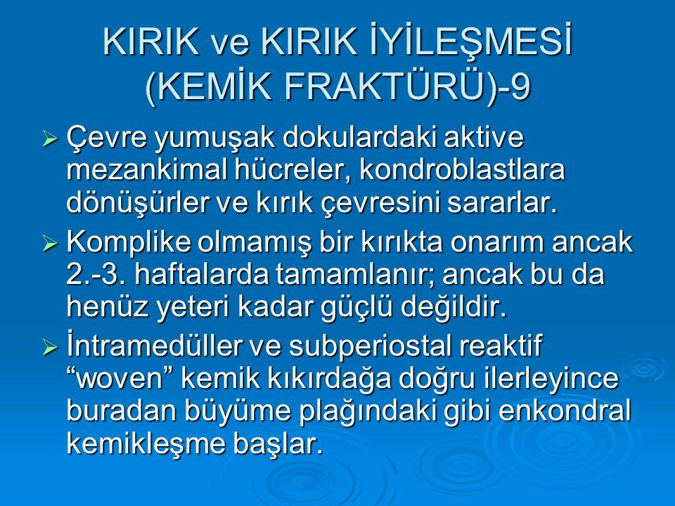 KIRIK ve KIRIK İYİLEŞMESİ (KEMİK FRAKTÜRÜ)-9