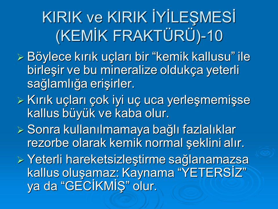 KIRIK ve KIRIK İYİLEŞMESİ (KEMİK FRAKTÜRÜ)-10