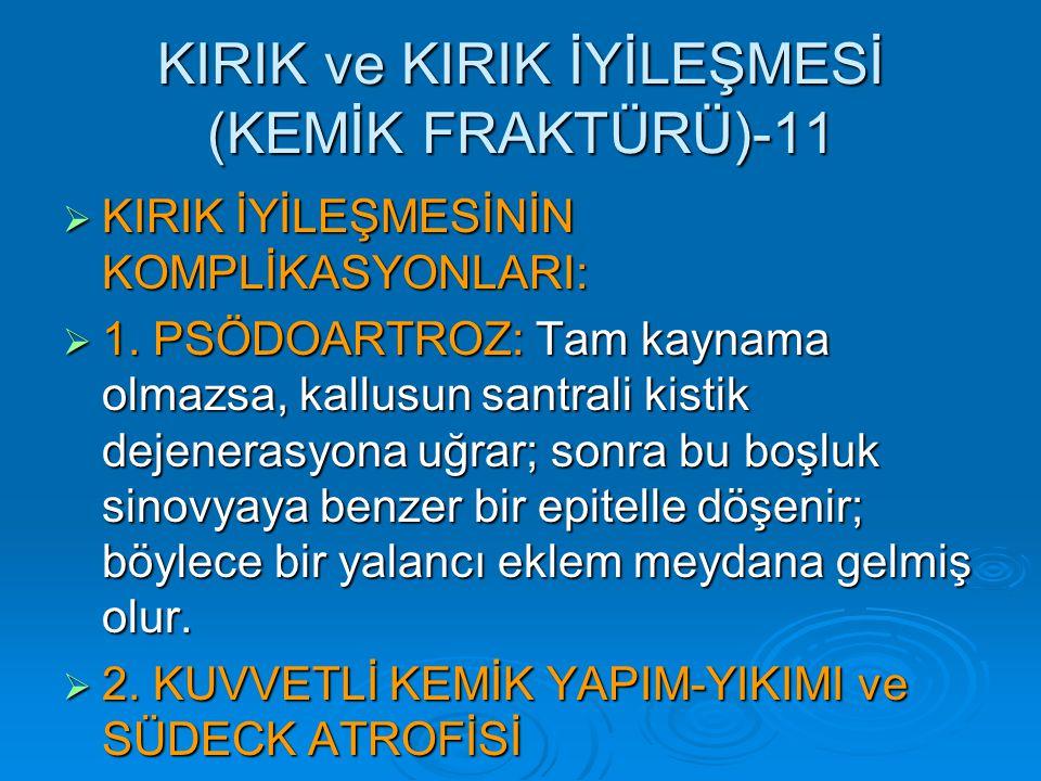 KIRIK ve KIRIK İYİLEŞMESİ (KEMİK FRAKTÜRÜ)-11