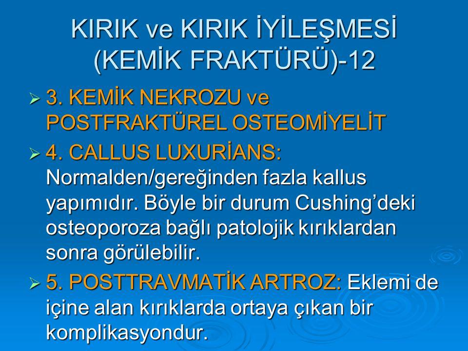 KIRIK ve KIRIK İYİLEŞMESİ (KEMİK FRAKTÜRÜ)-12