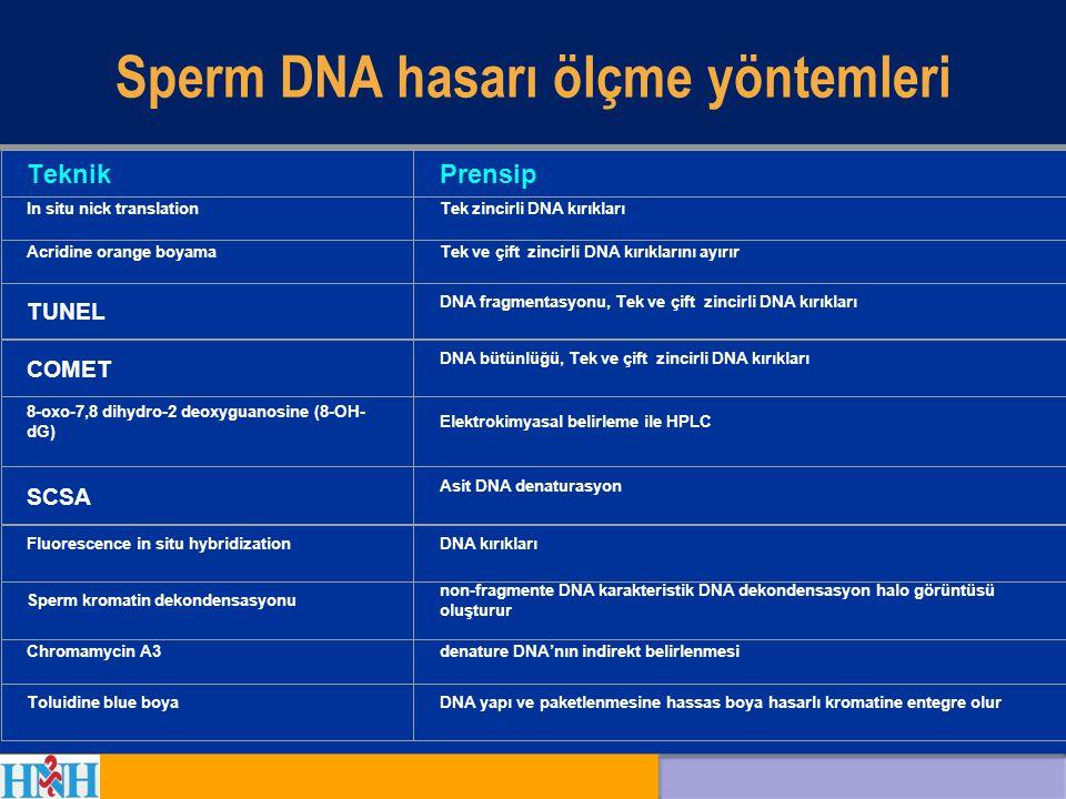 Sperm DNA hasarı ölçme yöntemleri