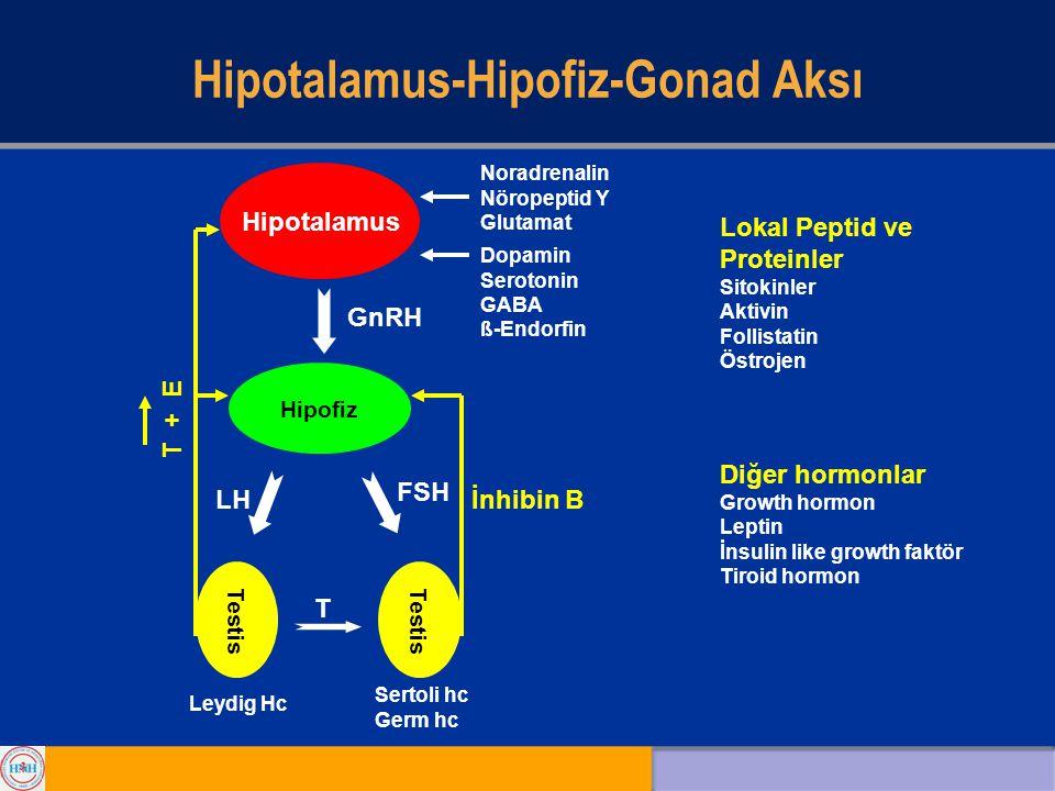 Hipotalamus-Hipofiz-Gonad Aksı