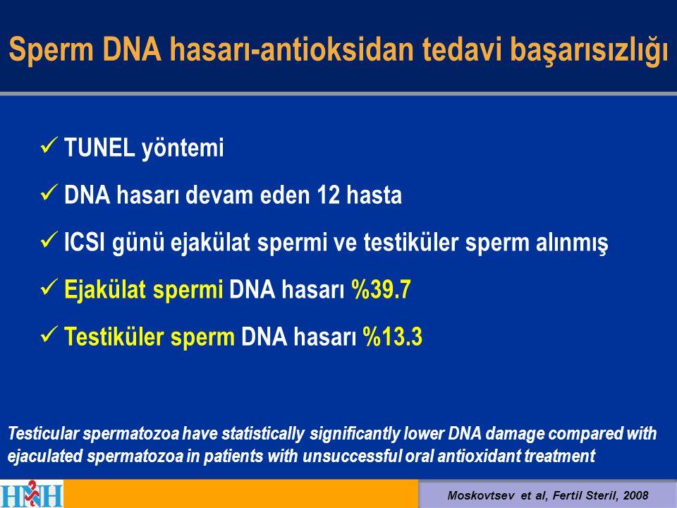 Sperm DNA hasarı-antioksidan tedavi başarısızlığı