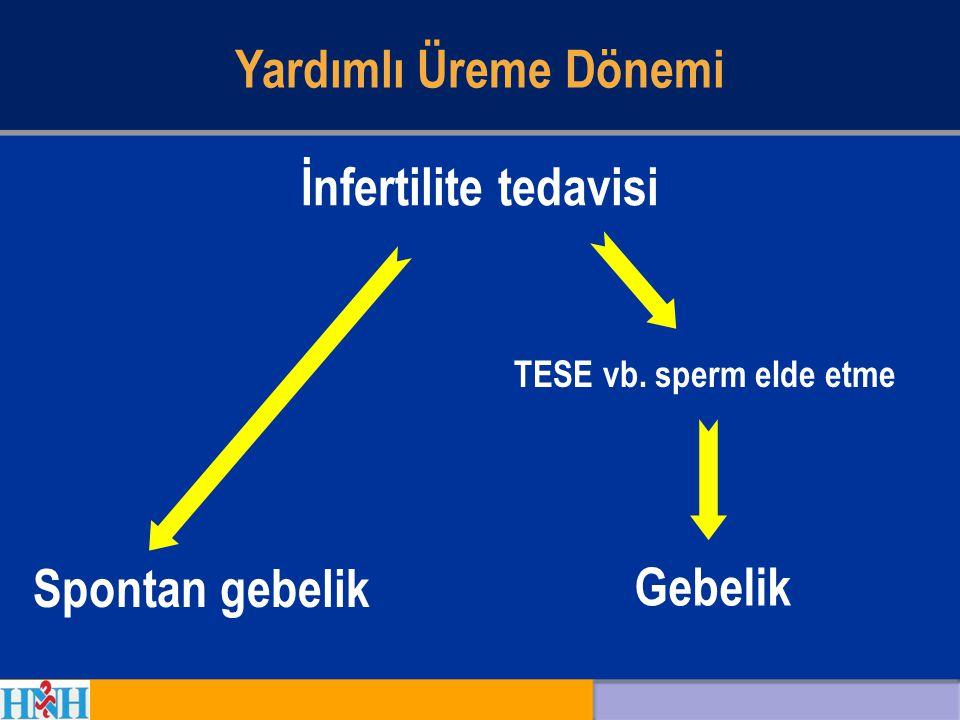 Yardımlı Üreme Dönemi İnfertilite tedavisi Spontan gebelik Gebelik