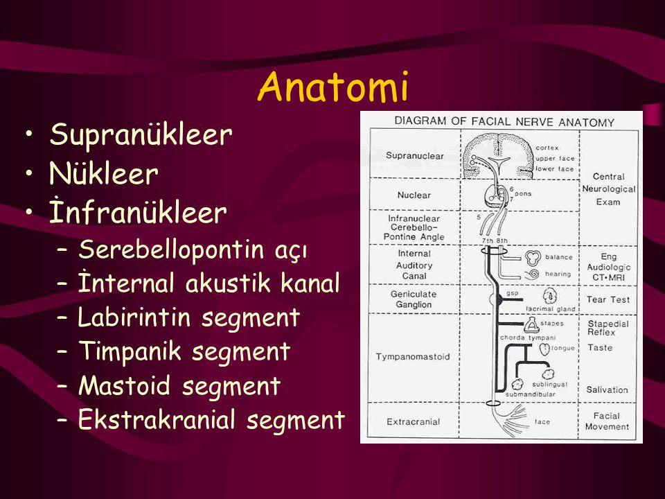 Anatomi Supranükleer Nükleer İnfranükleer Serebellopontin açı