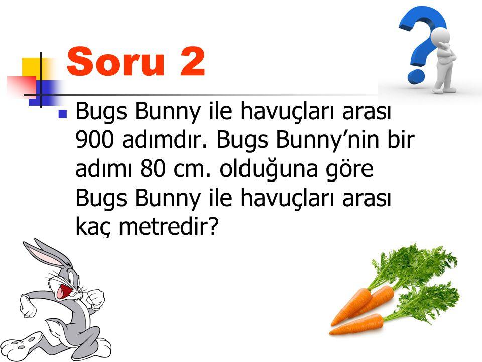 Soru 2 Bugs Bunny ile havuçları arası 900 adımdır.