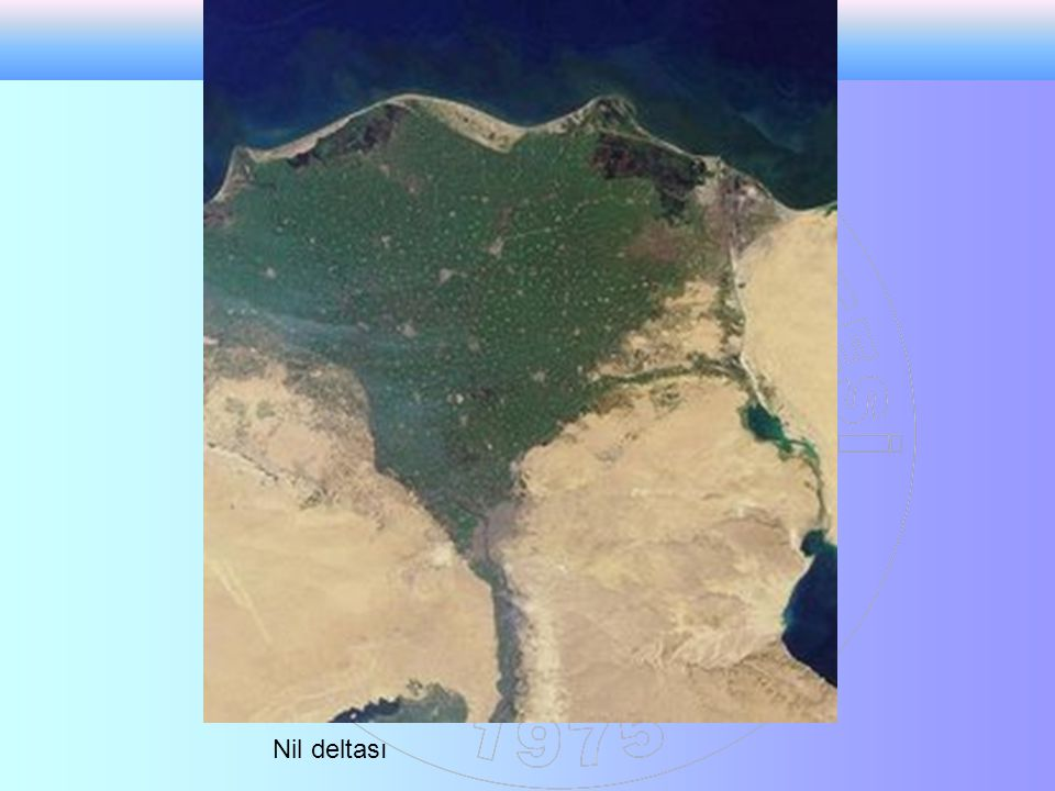 Nil deltası