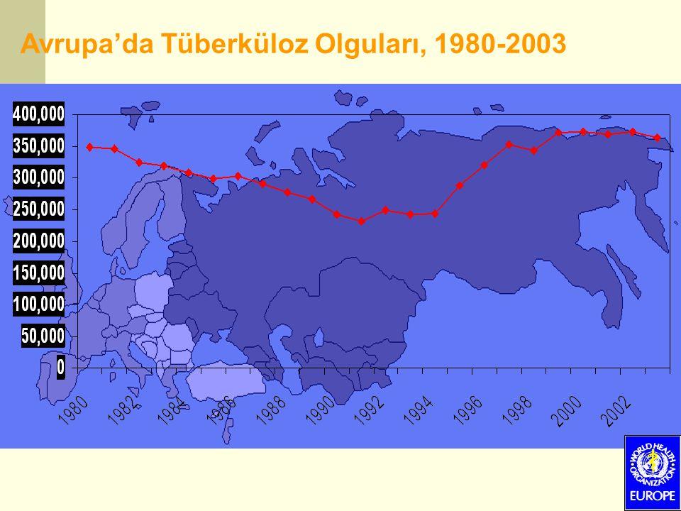 Avrupa'da Tüberküloz Olguları, 1980-2003