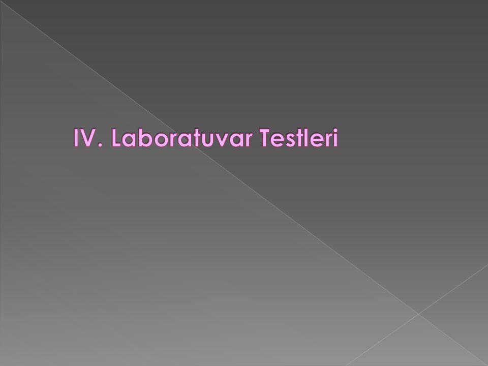 IV. Laboratuvar Testleri